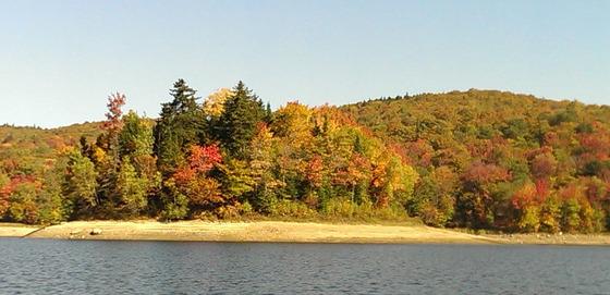 Island at Sugar Hill Reservoir