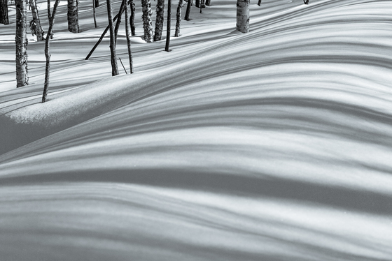 4b. Waves of shadows in the snow