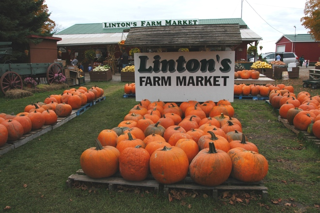 LINTON FARM 571 Raglan Road East, Oshawa, ON L1H 7K4, Canada