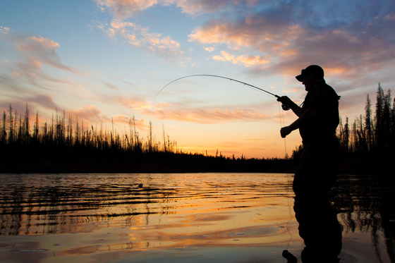 1. Sunset Trout