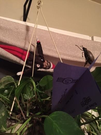 crash aviator elf