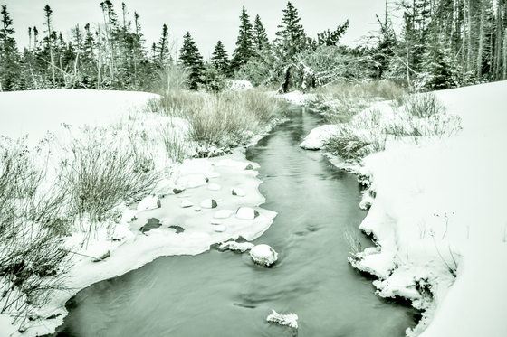 dreamy winter stream