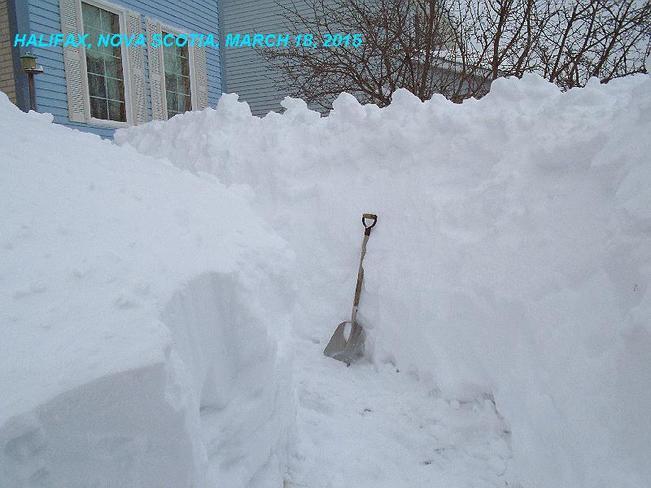 Snowstorm March   Halifax Nova Scotia Halifax Nova Scotia