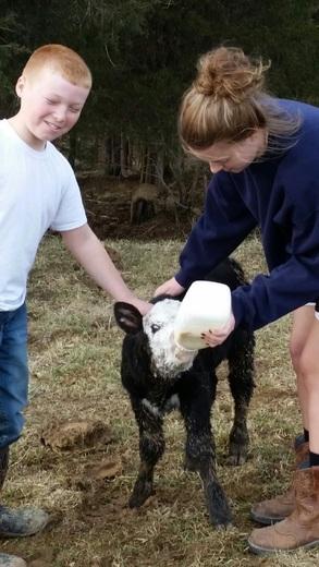 New life on the farm