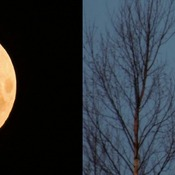 blood moon eclipse ontario - photo #38