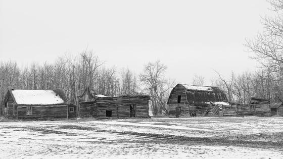 Old Yard