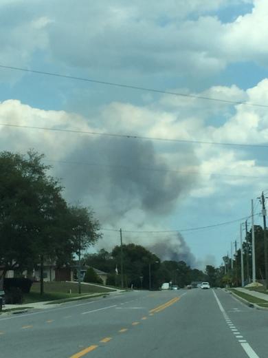 Forest Fire in Deltona