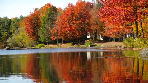 concours de photo 2015 paysage d 39 automne. Black Bedroom Furniture Sets. Home Design Ideas