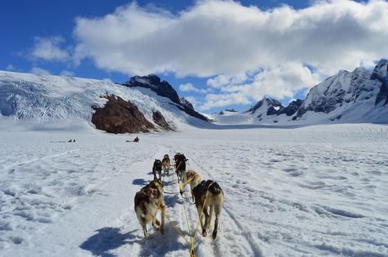 Mendenhall Glacier- Juneau, Alaska