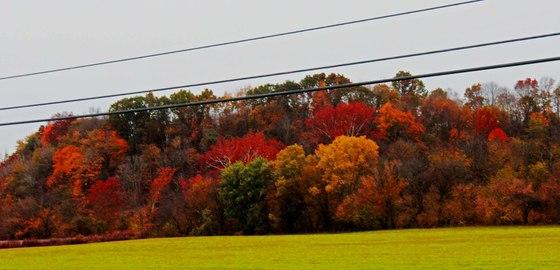 These Photo's Were Taken In Bradfordsville, In Marion Co. ky