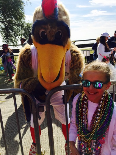 Pierre The Pelican at Mardi Paws
