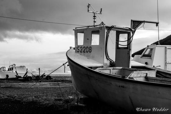 Lark Harbour