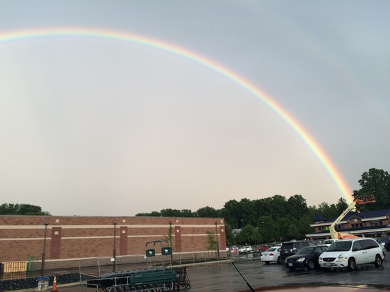 Arnold rainbows