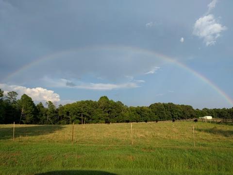 Rainbow in Hodges