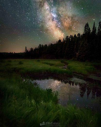 Milky Way over the Bog