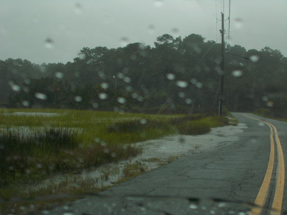 Roads up on roads from marsh in Coffee Bluff Plantation