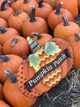 #Pumpkin Patch @ Alldredge Orchards