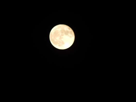 Hunters Moon in Yadkinville, NC