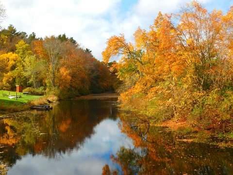 fall beautiful
