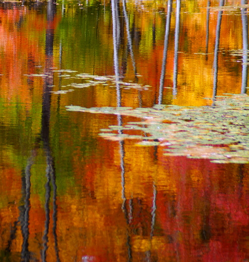 Autumn Water colours