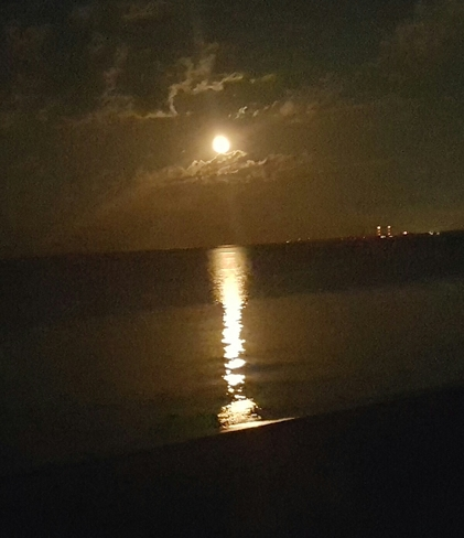 walk on beach on a moonlight night Reminder: next moonlight beach walk is this saturday night at seahurst beach burien's environmental science center moonlight beach walk series continues this month, with the next one set.