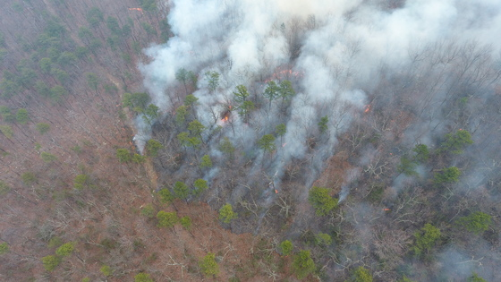 Fire on Pilot Mountain