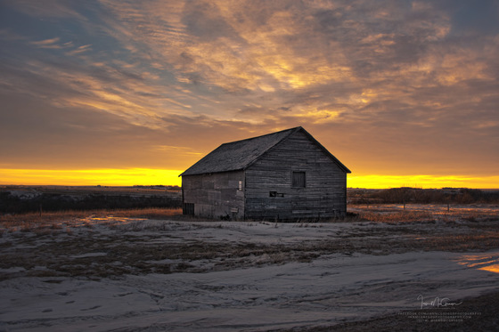 Prairie Morning