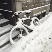 Le vélo oublié!!!