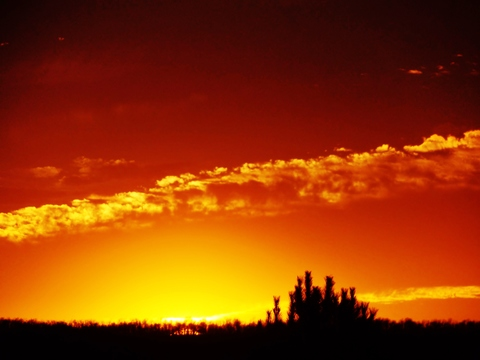sunset clouds, 2-23-2017