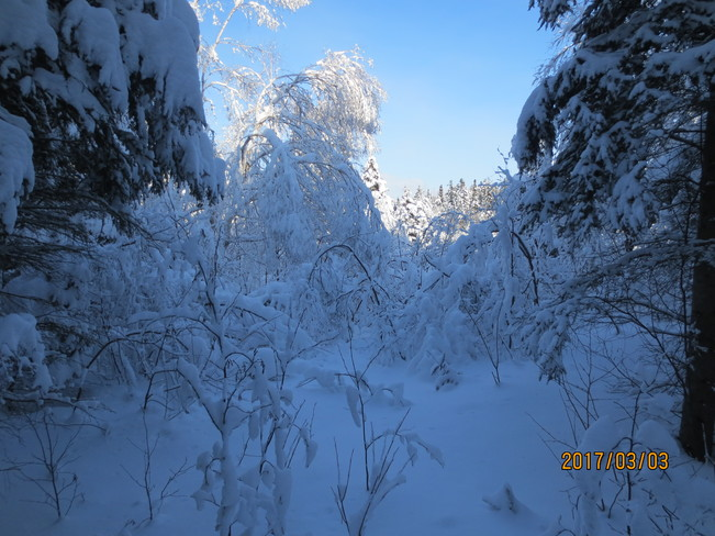Photos the weather network - Temperature maison hiver ...