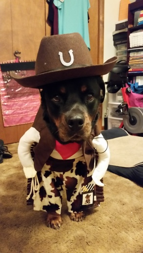 There's a new Sheriff in town.