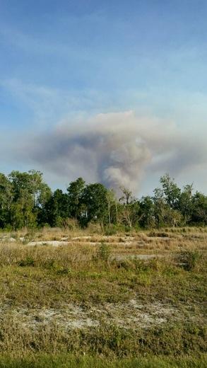 Brush fire in chuluota