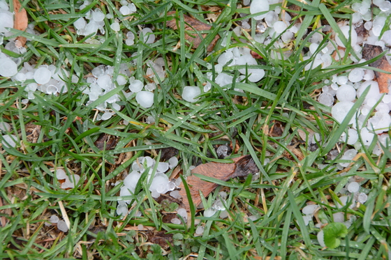 Hail in Delafield