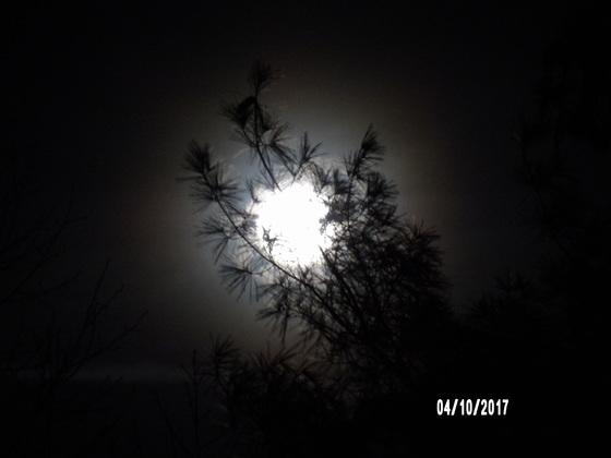 Full moon coming up in Cana, VA