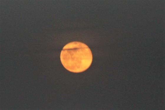 Pink Moon April 11, 2017