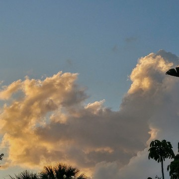 SunLight Shines on the Clouds!