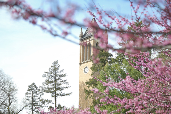 Spring on Iowa State's campus