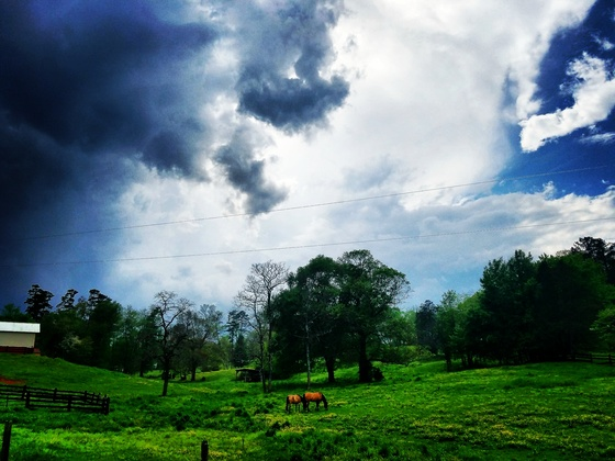 Storm rolling thru the pasture