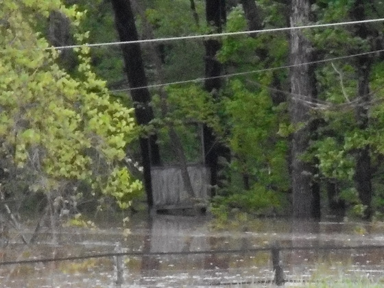 Flood Waters up to the bottom of deer stand in Advance, NC