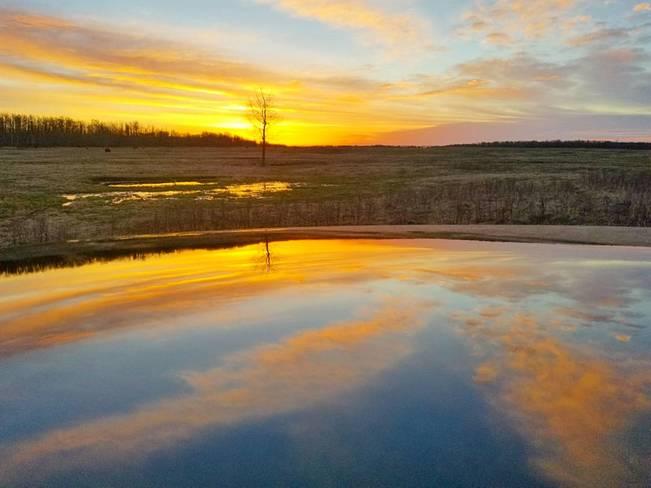 Elk Island National Park Hourly Weather