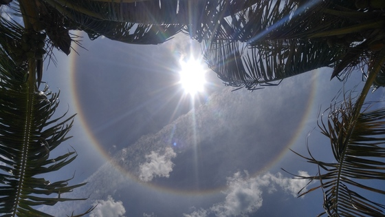 Rainbow 🌞