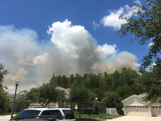 Fire residential brush