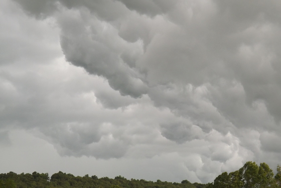 Friday Storms
