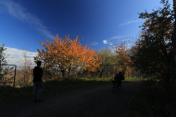 The Autumn Time