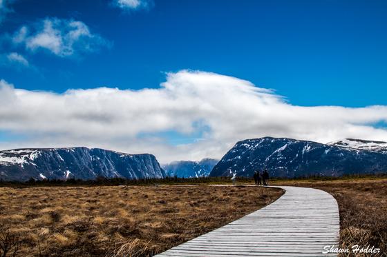 The Walk towards Gros Morne