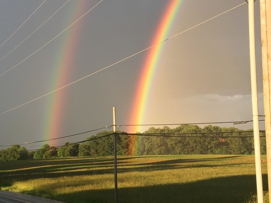 Most awesome rainbows