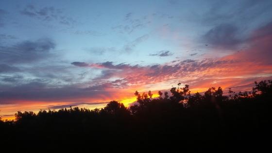Sunrise in Vero Beach!