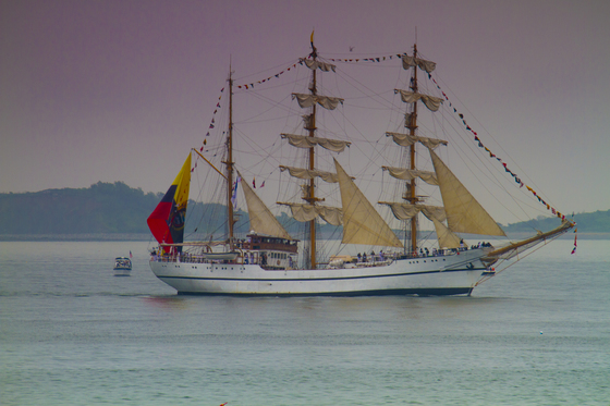 Tall ships Sail Boston - Robin Shahid