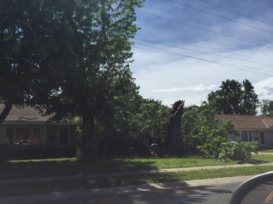 Storm Damage in OP