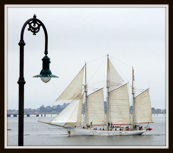 Castle Island - Tall Ships.